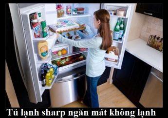 Tủ lạnh sharp ngăn mát không lạnh